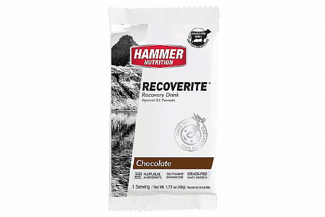 Hammer Nutrition Recoverite (Box of 12) Chocolate